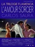 La trilogie flamenca : L'amour sorcier
